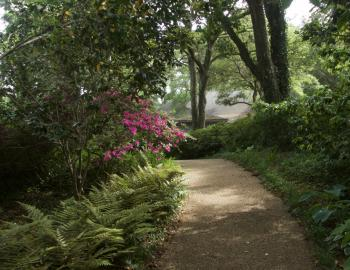 The paths in the Elizabethan Gardens are filled with delights for the senses.