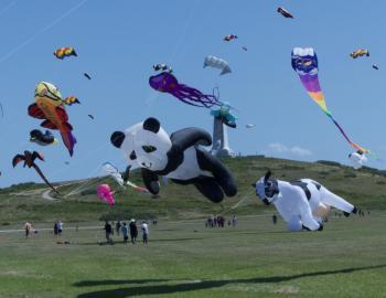 Kites at Wright Kite Festival.