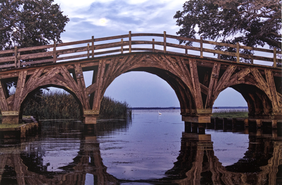 Morning Reflection Corolla photograph by George Wood