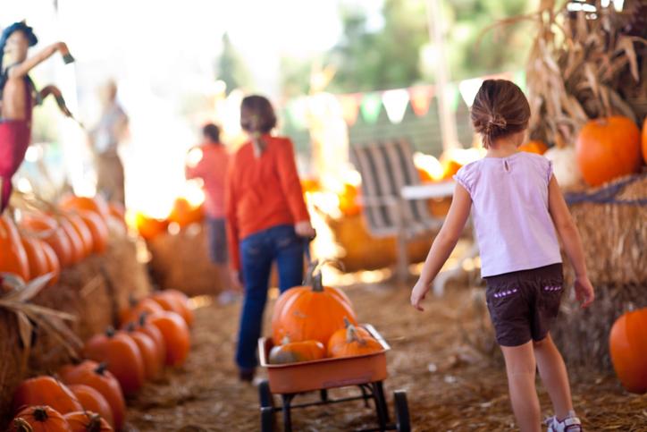 Children at the Harvest HayDay